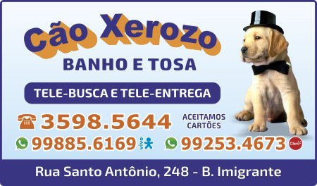 Pet Shop Cão Xerozo