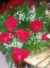 Floricultura Girassol Foto 2 - Guia CB