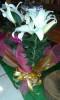 Floricultura Girassol Foto 22 - Guia CB