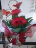 Floricultura Girassol Foto 18 - Guia CB
