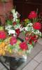Floricultura Girassol Foto 23 - Guia CB