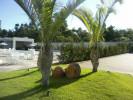 Floricultura Girassol Foto 26 - Guia CB