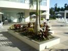 Floricultura Girassol Foto 28 - Guia CB