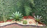 Floricultura Girassol Foto 29 - Guia CB