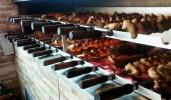 Restaurante Konrath Foto 5 - Guia CB